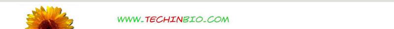 http://www.techinbio.com/2011_AA/MOD/BOTT/energia_00b.JPG
