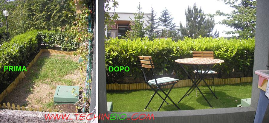 http://www.techinbio.com/images/VE_VI/PRATO/erba_finta_01.jpg