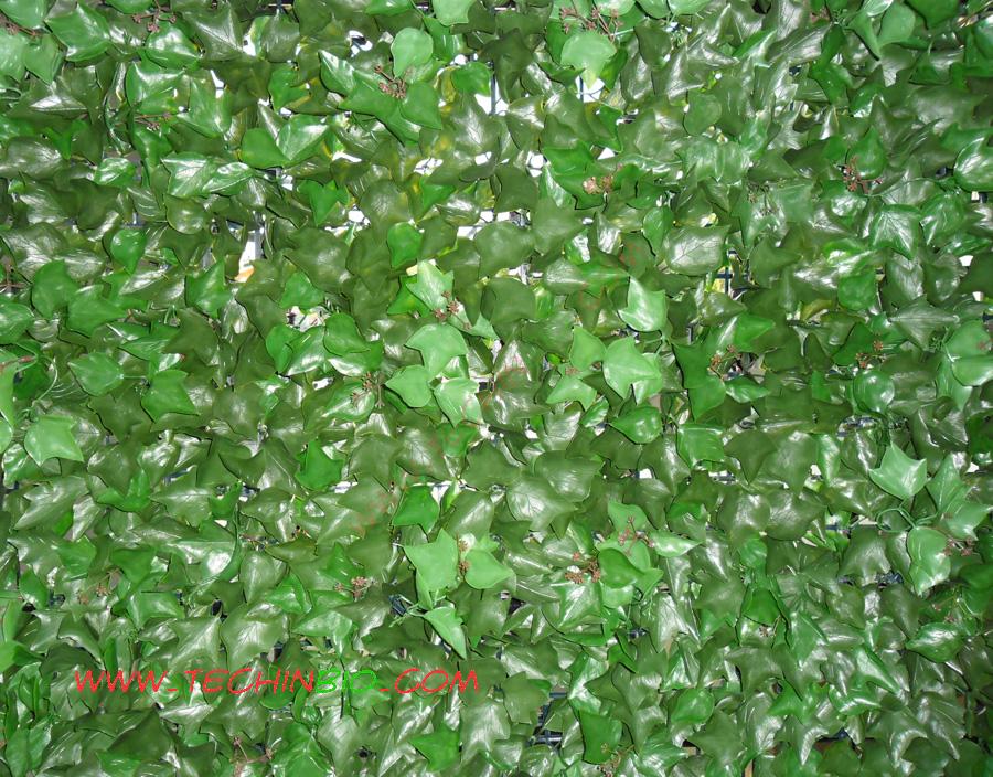 Siepi artificiali siepi sintetiche siepi plastica for Siepe edera artificiale